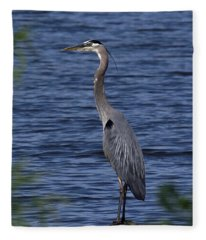 Great Blue Heron Dmsb0001 Fleece Blanket