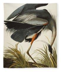 Ornithological Drawings Fleece Blankets