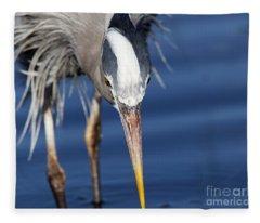 Great Blue Heron - Pin Point Fleece Blanket