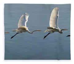 Great Egret Flight Sequence Fleece Blanket