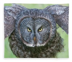 Great Gray Owl Flight Portrait Fleece Blanket
