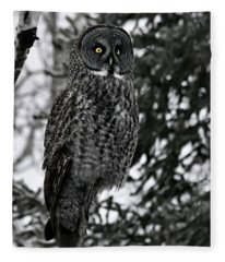 Great Grey Owl Portrait Fleece Blanket