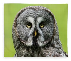 Great Grey's Portrait Closeup Square Fleece Blanket