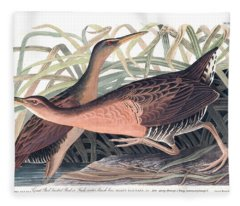 Great Red Breasted Rail Or Fresh-water Marsh Hen Fleece Blanket
