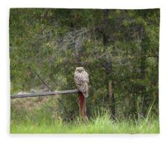 Greathornedowl2 Fleece Blanket