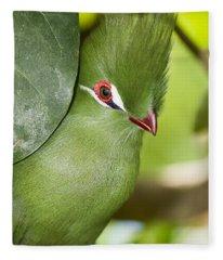 Green Turaco Bird Portrait Fleece Blanket