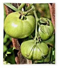 Green Garden Tomatoes On The Vine Fleece Blanket
