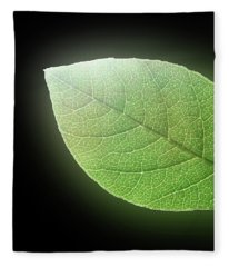 Green Glow Fleece Blanket