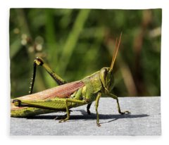Green Grasshopper Fleece Blanket