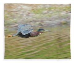 Green Heron In Flight Fleece Blanket