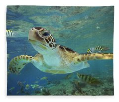 Green Sea Turtle Chelonia Mydas Fleece Blanket