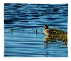 Green-winged Teal Fleece Blanket