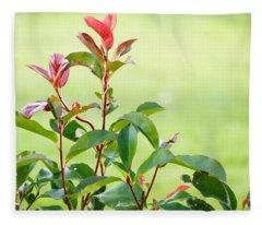 Greenery And Red Fleece Blanket