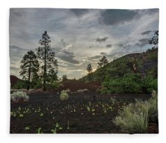 Greet The Day Fleece Blanket