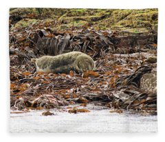 Grey Seal Fleece Blanket