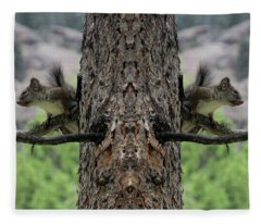 Grey Squirrels On The Look Out Fleece Blanket