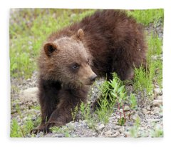 Grizzly Cub II Fleece Blanket