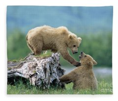 Grizzly Sisters Playing Fleece Blanket