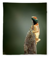 Ground Agama Sunbathing Fleece Blanket