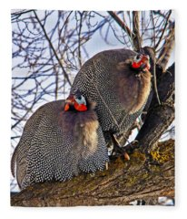 Guinea Fowl Fleece Blanket