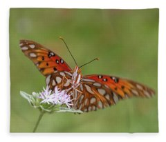 Gulf Fritillary On Elephantsfoot Fleece Blanket