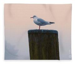Gull And Fog Fleece Blanket