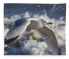 Gull At The Beach Fleece Blanket