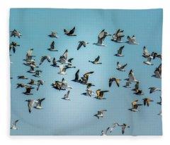 Gulls In Flight Fleece Blanket