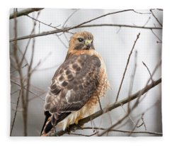 Hals Nicitating Membrane Fleece Blanket