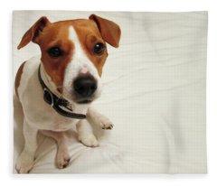 Happiness Is A Cute Puppy Fleece Blanket