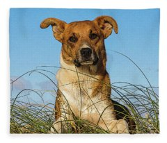 Happy Dog At The Beach Fleece Blanket