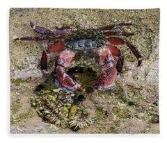 Happy Little Crab Fleece Blanket