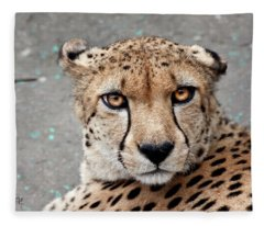 Harbin Leopard Fleece Blanket