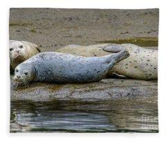 Harbor Seal Banana Pose Fleece Blanket