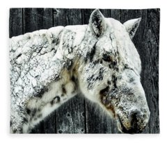 Hard Winter Fleece Blanket