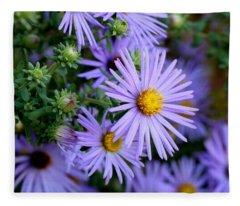 Hardy Blue Aster Flowers Fleece Blanket