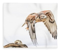 Harris Hawk #1 Fleece Blanket