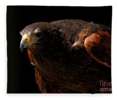 Harris Hawk - Intense Stance Fleece Blanket