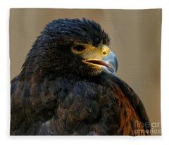 Harris Hawk - Open Mouth Fleece Blanket