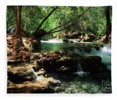 Havasu Creek In Campground Fleece Blanket
