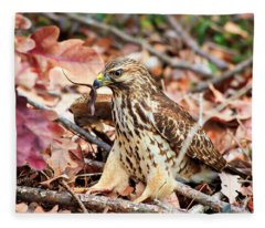 Hawk Catches Prey Fleece Blanket