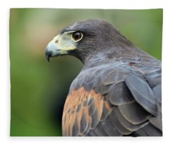 Hawk Eye Fleece Blanket