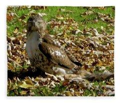 Hawk Falling Leaves Fleece Blanket
