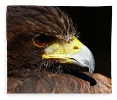 Hawk Intensity Fleece Blanket