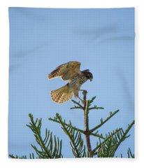 Hawk With Regal Landing Fleece Blanket