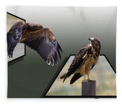 Hawks Fleece Blanket