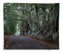 Headstone Road Revisited Fleece Blanket