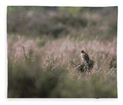 Heath Song  Skylark Fleece Blanket