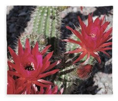 Hedgehog Cactus Fleece Blanket
