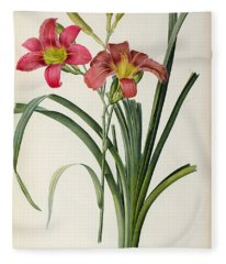 Hemerocallis Fulva Fleece Blanket
